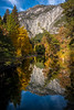 Looking Down Merced From Sentinel Bridge - Lower Yosemite Valley, Yosemite National Park, California