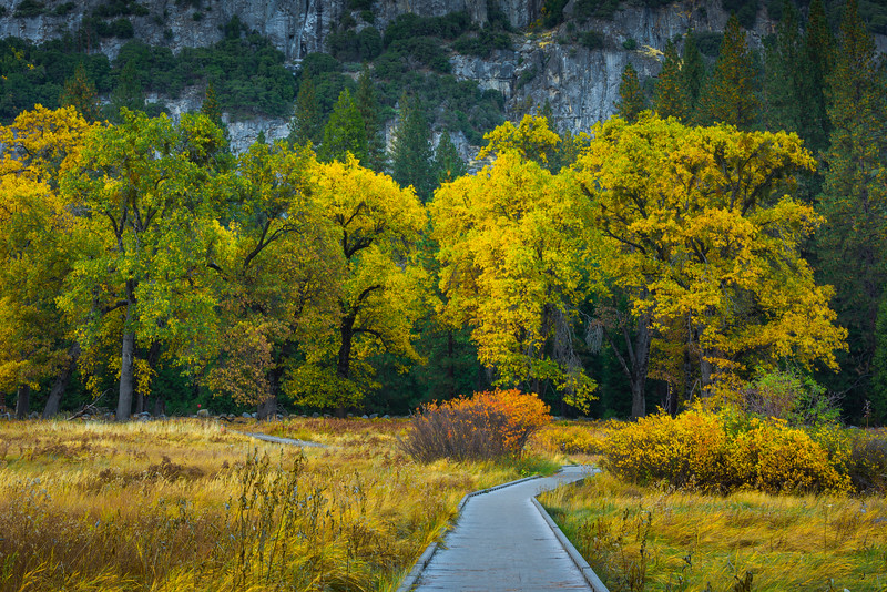 Boardwalk Of Color Underneath Upper Yosemite Falls - Yosemite National Park, Eastern Sierras, California