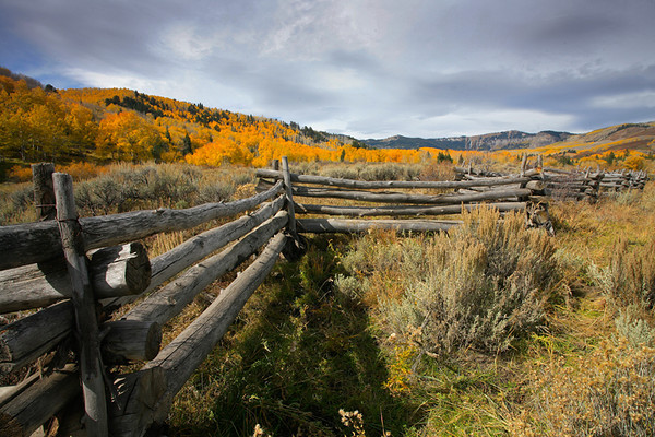 Images from around the state of Colorado