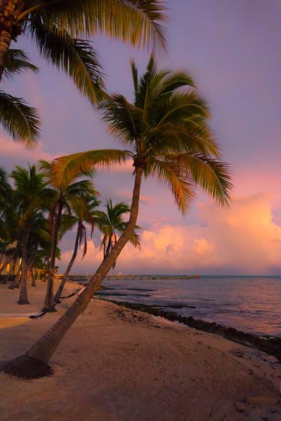 Sunset On Higgs Beach - Key West, Florida Keys, Florida