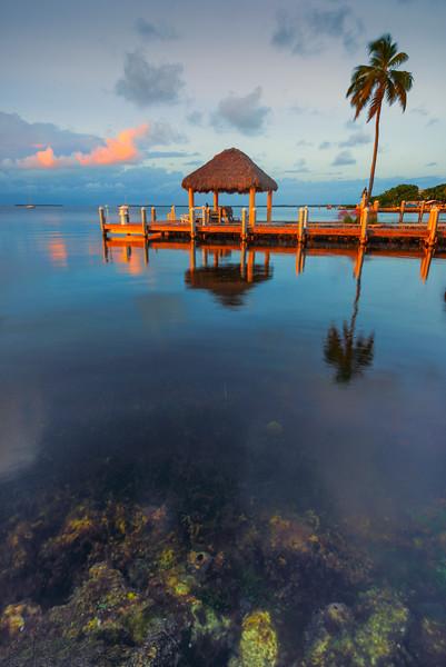 A Sneak View Under Paradise -  Key Largo, Florida Keys, Florida