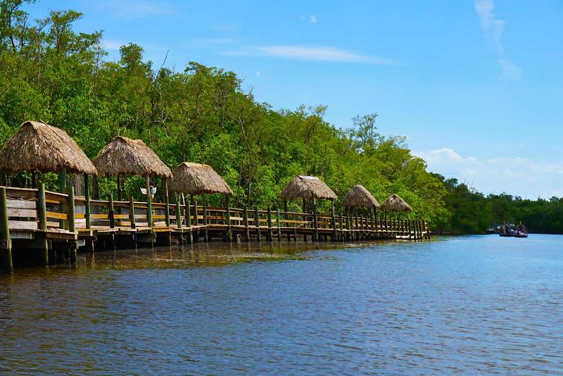 The Canals Of The Everglades - Everglades National Park, Florida