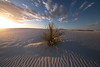 The Warmth Of First Light Breaking Horizon - White Sands National Monument, New Mexico