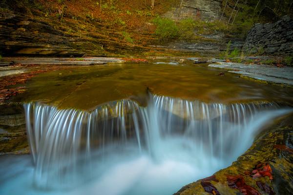 Down Low Streamside - Robert Treman Park, Finger Lakes Region, Upstate NY, NY