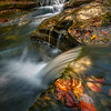 Converging Streams Of Cascades In Late Light - Robert Treman Park, Finger Lakes Region, Upstate NY, NY