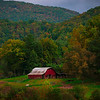 Pisgah National Forest - Great Smoky Mountain Region, North Carolina_39