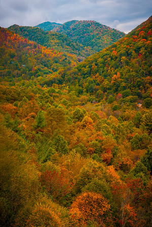Maggie Valley - Great Smoky Mountain Region, North Carolina_42