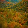Maggie Valley - Great Smoky Mountain Region, North Carolina_42