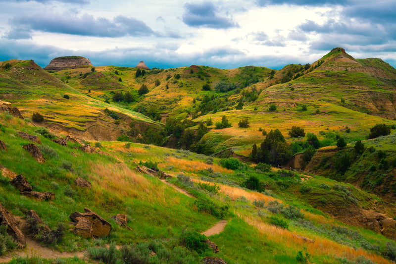 Spring In Full Glory In The Badlands - Theodore Roosevelt National Park, North Dakota