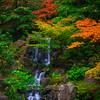 Japanese Gardens, Portland, Oregon_8