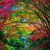 Japanese Gardens, Portland, Oregon_2