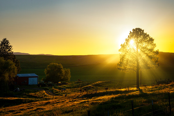 Last Light Highlighting The Farm Wallowa County, Oregon