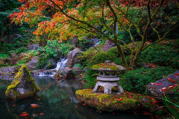 Japanese Gardens, Portland, Oregon_11