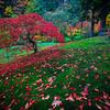 Japanese Gardens, Portland, Oregon_15