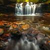 Down At The Base Of The Falls-Ricketts Glen State Park, Benton,  Pennsylvania