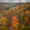 Looking Down Into The Valley Of The Allegheny - Allegheny Mountain Range, Pennsylvania