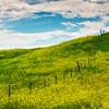 Along The Fence - Badlands National Park, South Dakota