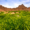 Fields Of Sweet Clover Surround Badlands - Badlands National Park, South Dakota
