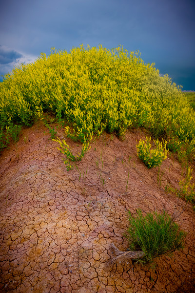 On Top Of The Yellow Mound - Badlands National Park, South Dakota