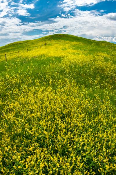 Way Way Up On The Hill - Badlands National Park, South Dakota