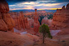 Sunburst Through The Morning Clouds - Bryce Canyon National Park, Utah