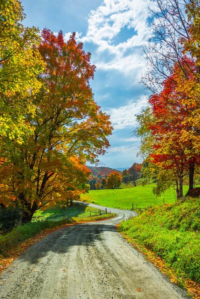 Bending Roads Throiugh The Autumn Colors - Vermont