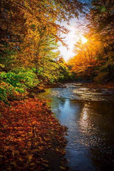 Sun Setting On The River Bank - Vermont