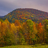 Mountain Peaks Covered In Color - Vermont
