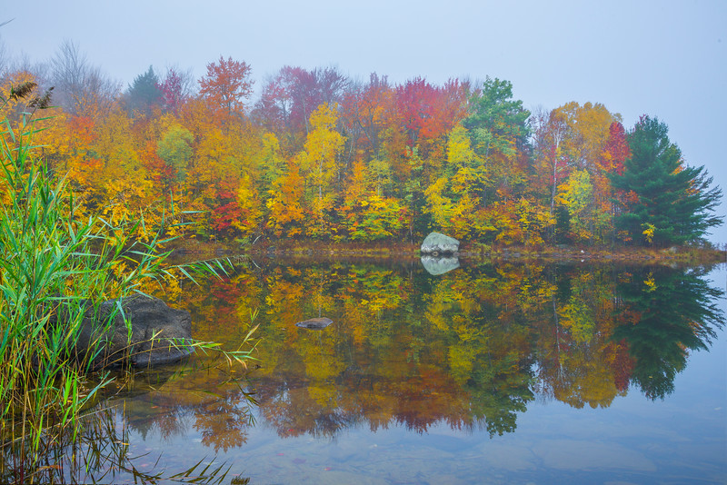 Calm Morning Misty Mirror - Vermont