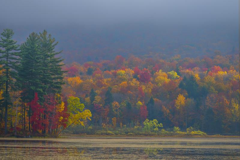 Sun Spots On The Hillsides - Vermont