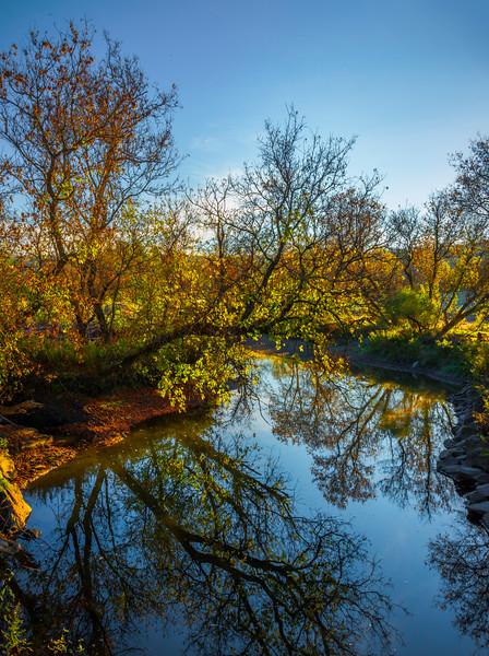 Fall Colors Along The Creek