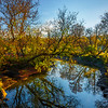 Fall Colors Along The Creek