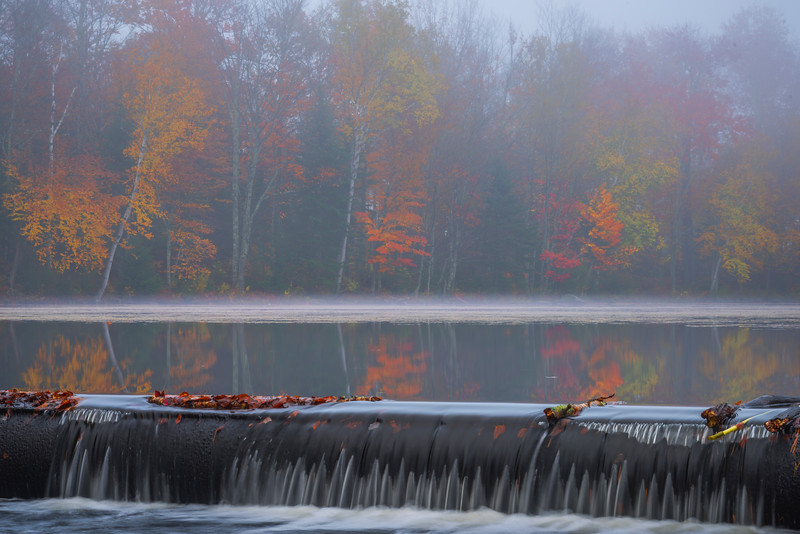 In Close To Still Moments In The Mist - Vermont