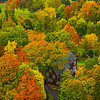 Local Homes Immersed In Autumn Colors From Aerial Perspective - Vermont