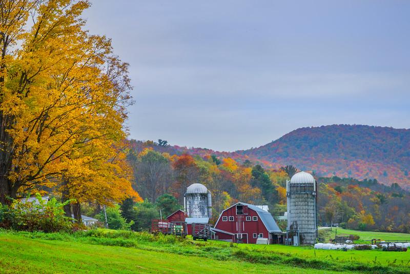 Life On The Farm In Arlington - Vermont