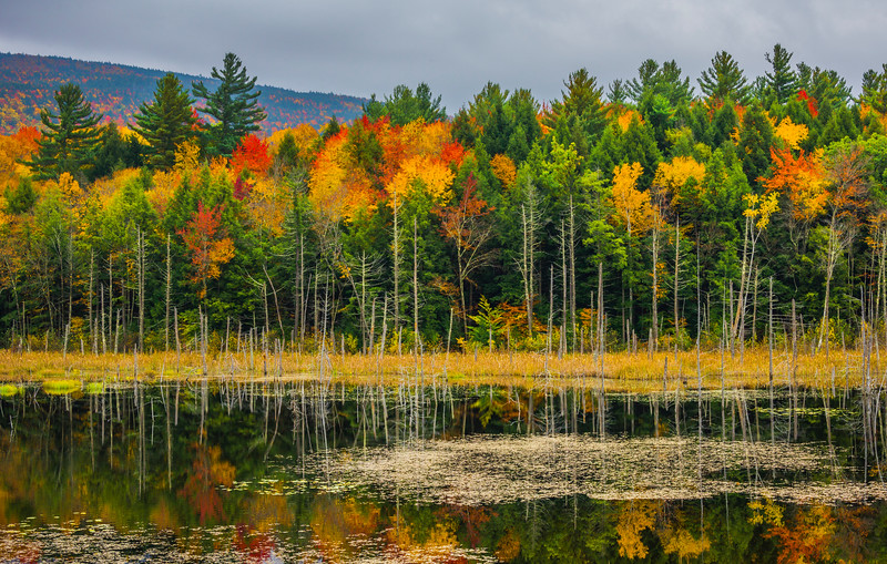 Repeating Patterns Of Lines And Colors - Vermont