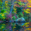 Garden Of Eden Colors - Vermont