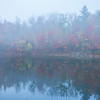 Morning Mist Break At The Pond - Vermont