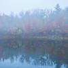 Morning Mist Break At The Pond - Vermont