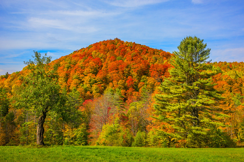 Once At The Top Nothing But Warm Red Fall Colors - Vermont