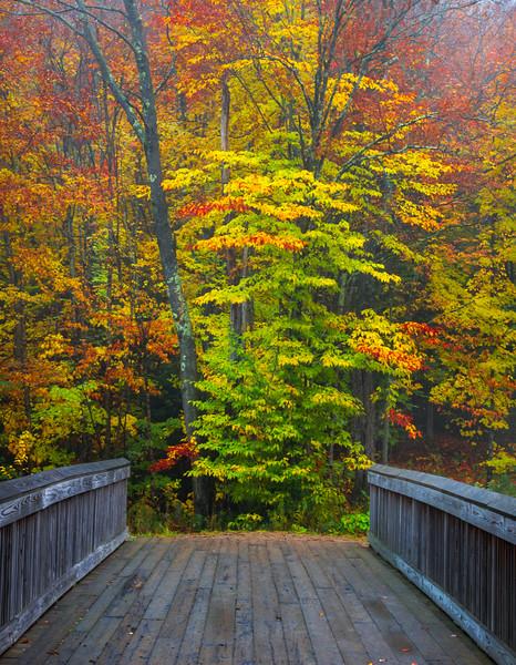 Just Over The Bridge - Vermont