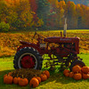 Halloween And Autumn Together In Vermont - Vermont