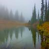 Autumn Mist Reflections -Mount Rainier National Park, Washington