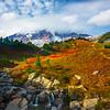 Wide Angle Scene Of Mrytle Falls And Mt Rainier - Paradise Side, Mt Rainier National Park, WA