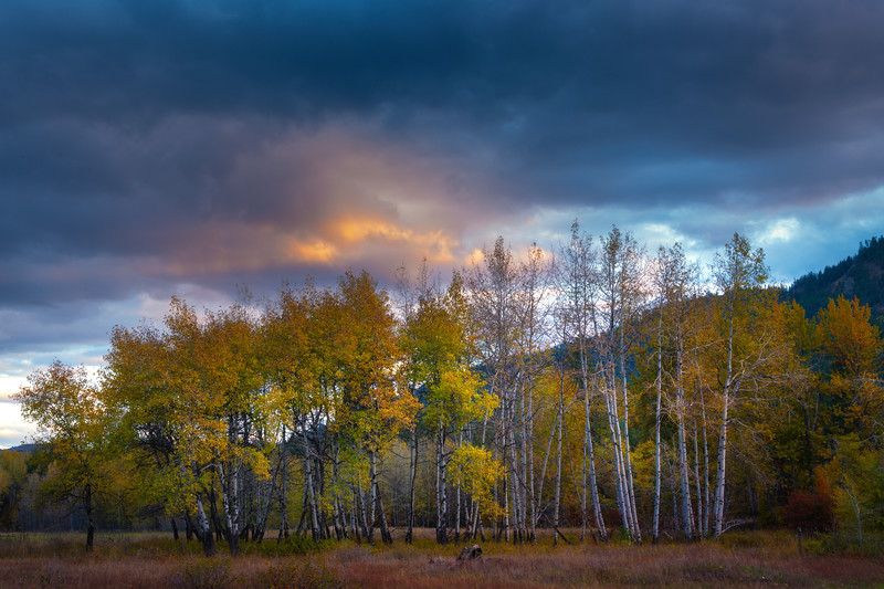 Color Of The Autumn Under The Pink Skies - Methow Valley, Washington State