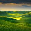 Spotted Light Over The Mounds - The Palouse Region, Washington