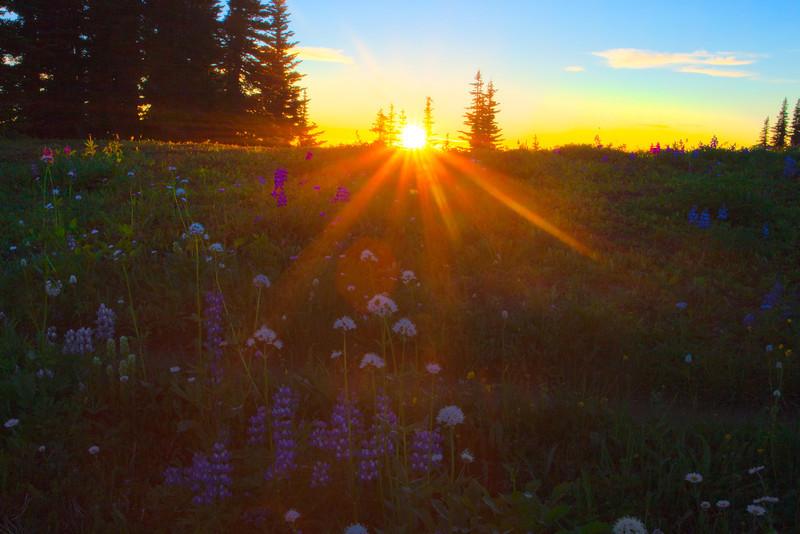Last Sunset Of The Trip - Skyline Divide, Mount Baker, North Cascades National Park, WA