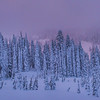 Mt Rainier In Twilight Color_Pano - Paradise Area, Mount Rainier National Park, WA
