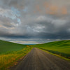 Road Leading Through Back Road Hills - The Palouse Region, Washington