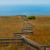 Overlooking Ocean Near Cattle Point - Friday Harbor, San Juan Islands, WA